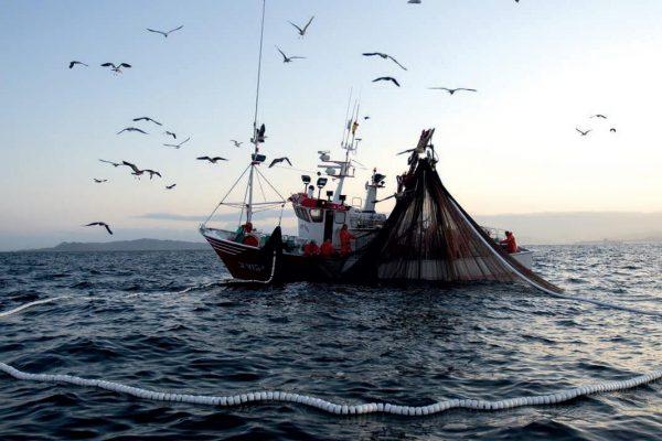 Dia mundial pesca -gremi peixaters-