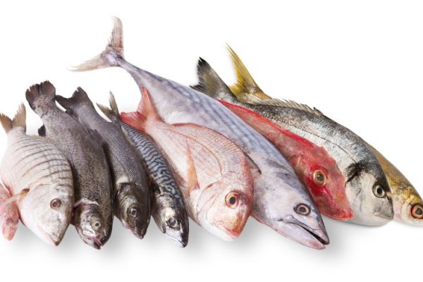 Menjar peix pot prevenir el càncer colorectal