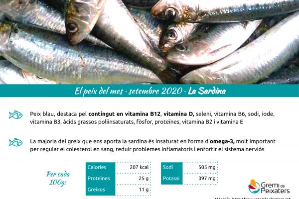 Peix del mes de setembre 2020 – La sardina