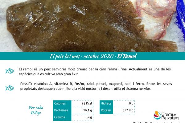 El rèmol, el nostre peix del mes d'octubre!