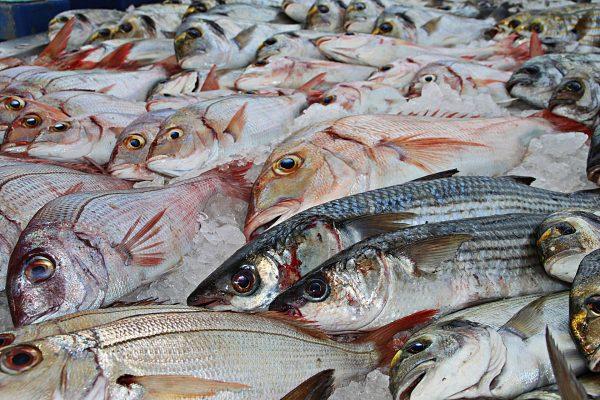 La importància dels àcids grassos omega-3 per a la salut humana