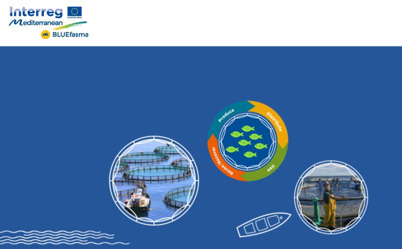 Millora ambiental peixateries