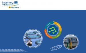 Espai web dedicat a l'Economia Circular