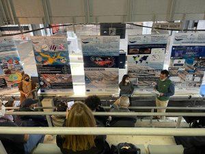 Jornada de divulgació científica sobre l'estat de salut de la Mar Catalana
